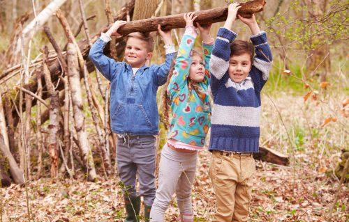 Sensibilisation des professionnels au développement des compétences psychosociales chez les enfants et les adolescents