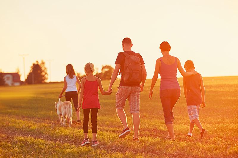 Les familles d'accueil : une vocation qui permet de sauver des vies !